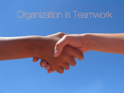 Organization-Hannah