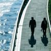 内部監査部門が内部統制評価を通じて事業に貢献するためには